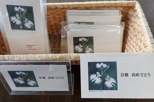 サギ草のメッセージカード(10枚入り)画像