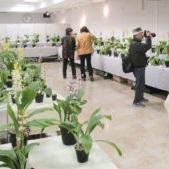 展示会・花と緑の講習会