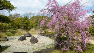 日本庭園画像