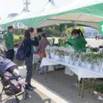 緑化キャンペーン・記念樹配布画像