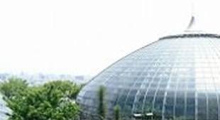 手柄山温室植物園イメージ画像