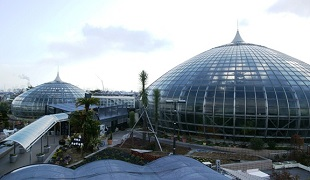 手柄山温室植物園の運営・管理の画像